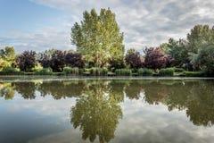Красивое небольшое озеро Стоковые Изображения