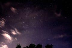 Красивое ночное небо и много звезд с листьями дерева стоковое фото