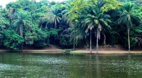 Красивое озеро в Африке стоковое изображение