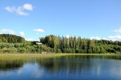 Красивое озеро в парке Стоковая Фотография