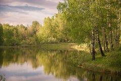 Красивое озеро в древесинах территории Altai Стоковое Фото