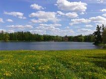 Красивое озеро звезды Стоковые Фото