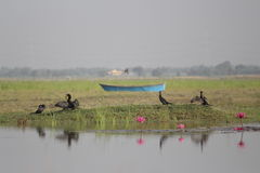 Красивое озеро и ландшафт Стоковое фото RF