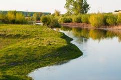 Красивое озеро окруженное зеленой травой Озеро в природе Outfoor стоковые изображения