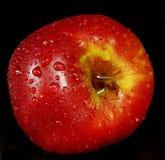 Красивое органическое яблоко на черной предпосылке Стоковые Изображения RF