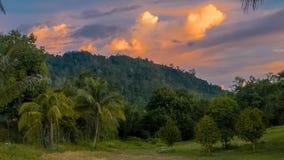 Красивое пастельное cloudscape захода солнца над джунглями Стоковое Изображение RF