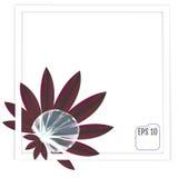 Красивое падение росы на лист красивейшая рамка Мягкое мечтательное tende Стоковые Изображения RF