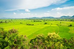 Красивое поле зеленого цвета риса landcape, гора с голубым небом в s Стоковые Фотографии RF