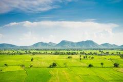 Красивое поле зеленого цвета риса landcape, гора с голубым небом в s Стоковое фото RF