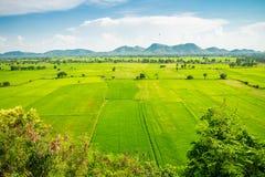 Красивое поле зеленого цвета риса landcape, гора с голубым небом в s Стоковое Изображение RF