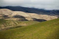 Красивое поле фермы наклона горы ландшафта в Новой Зеландии Стоковая Фотография RF