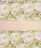 Красивое приглашение с розовыми розами - праздничный флористический ба свадьбы Стоковое фото RF