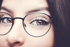 Красивое проницательное ` s женщины коричневого цвета взгляда наблюдает стоковое изображение rf