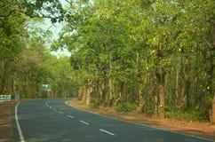Красивое развитие дороги шоссе в лесе в birbhum стоковые фотографии rf