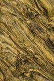 Красивое размывание трясет в прибое океана Стоковые Изображения RF