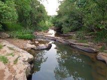 Красивое река в джунглях стоковые фотографии rf