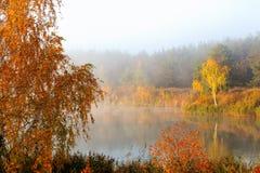 Красивое река осени создано программу-оболочку в тумане На береге желтые деревья стоковая фотография rf