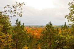 Красивое река Ausable в осени Стоковые Фотографии RF