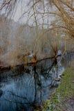 Красивое река Jihlava Стоковое Изображение RF