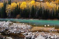 Красивое река kanas Стоковое Изображение