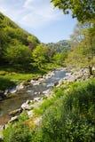 Красивое река Lynmouth Девона на прогулке к Watersmeet Стоковые Фотографии RF
