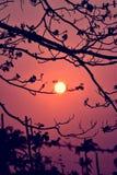 Красивое романтичное захода солнца Стоковые Фотографии RF