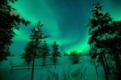 Красивое северное сияние с зелеными светами стоковые фотографии rf
