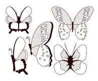 Красивое собрание бабочек иллюстрация вектора