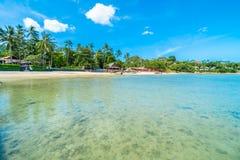Красивое тропическое море пляжа и зашкурит с пальмой кокоса дальше Стоковое Изображение