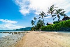 Красивое тропическое море пляжа и зашкурит с пальмой кокоса дальше Стоковые Изображения