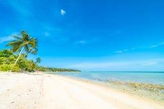 Красивое тропическое море пляжа и зашкурит с пальмой кокоса дальше Стоковое Фото