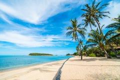 Красивое тропическое море пляжа и зашкурит с пальмой кокоса дальше Стоковое фото RF