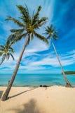 Красивое тропическое море пляжа и зашкурит с пальмой кокоса дальше Стоковые Изображения RF