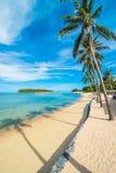 Красивое тропическое море пляжа и зашкурит с пальмой кокоса дальше Стоковая Фотография