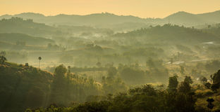 Красивое туманное утро горы при солнечный свет проходя thro Стоковая Фотография RF
