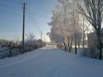 Красивое утро зимы! Стоковые Изображения RF