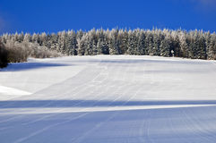 Красивое утро на подготовленных наклонах лыжи Стоковая Фотография