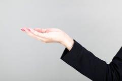 Красивое удерживание руки женщин Стоковое Изображение RF