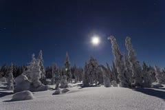 Красивое фото природы и ландшафта Швеции Скандинавии на холодной ноче зимы Стоковые Изображения