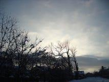 Красивое фото Стоковая Фотография RF