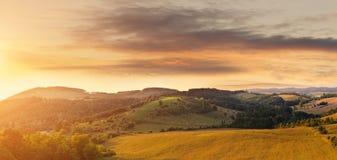 Красивое холмистое поле, сфотографированное от высоты Стоковая Фотография RF