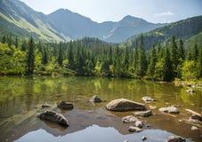 Красивое, чистое озеро в долине горы в затишье, солнечном дне Ландшафт горы с водой в лете стоковое фото rf