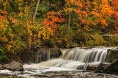 Красивое Berea понижается в осень Стоковая Фотография