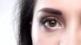 Красивое blinkin карего глаза конец вверх движение медленное сток-видео