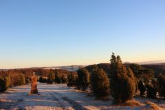 Красивое eifel ландшафта стоковая фотография