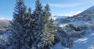 Красивое landscaoe зимы в carpathians Стоковые Фото
