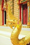 Красивое Nagas Стоковое Изображение RF