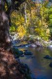 Красивое Sedona Аризона на солнечный день осени Стоковые Изображения RF