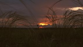 Красивое timelapse заходящего солнца над полем далекие дождевые облака и красочные облака захода солнца в голубом небе над видеоматериал