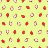 Красивой картина вектора нарисованная рукой безшовная fruits тропическо Dragonfruit, pitaya, pitahaya иллюстрация вектора